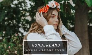 Desktop Lightroom Preset WONDERLAND 3622322