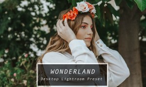 Desktop Lightroom Preset WONDERLAND 3622322