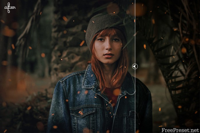Moody Light Photoshop Action