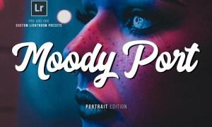 Moody Portrait Lightroom Presets 2577414