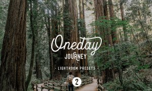 Oneday Journey 2 Lightroom presets 2166797