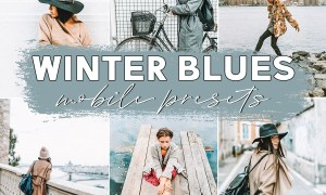 Winter Blues Mobile Presets 3621104