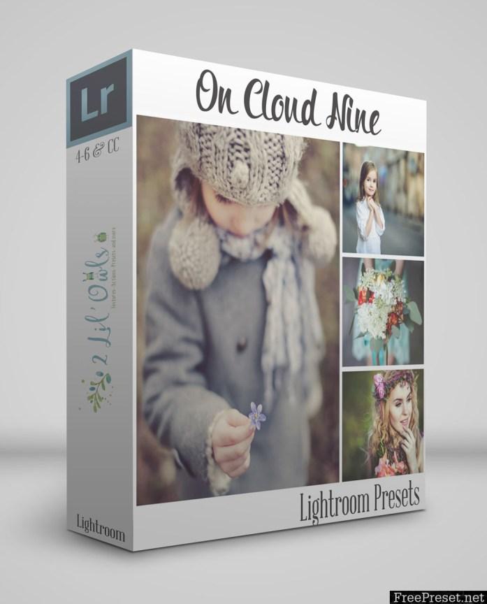 2 Lil' Owls - On Cloud Nine Lightroom Presets