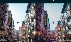 Chinatown Style Lightroom Presets 23566040