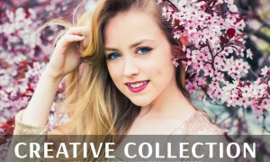 Creative Collection Mobile & Desktop Presets