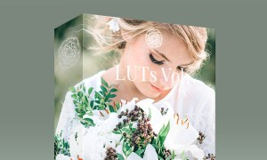 Kreativ Wedding LUTs Vol1 - Vol3 (Win/Mac)