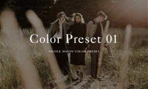 Nicole Mason Photography - Color Preset 01