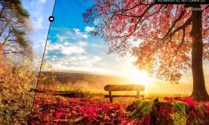 Romantic Autumn Lightroom Presets D5VM6B