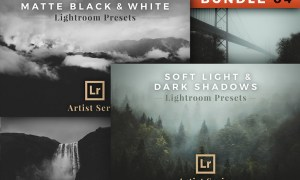 Artist Series – Lightroom Bundle 04 2782619