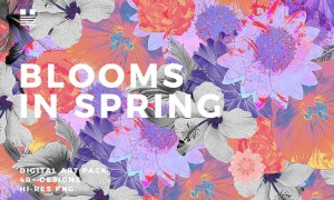 Blooms in Spring 6HHHGQ - PNG