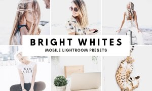Bright White Lightroom Presets Theme 1591059
