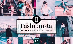 Mobile Lightroom Preset Fashionista 3320072