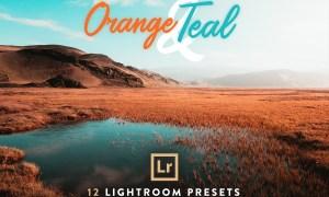 Orange & Teal Lightroom Presets 2785053