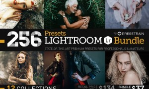 256 New Lightroom Presets Bundle 1157201