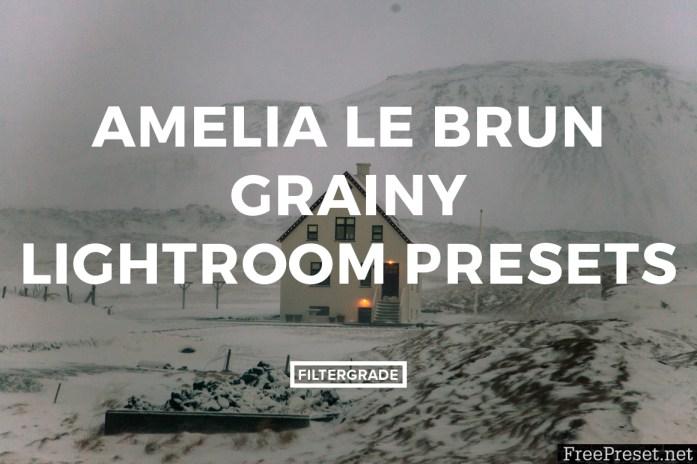 Amelia Le Brun Grainy Lightroom Presets