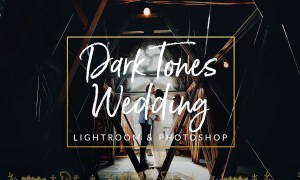 Dark Film Tones Wedding Presets 1310290