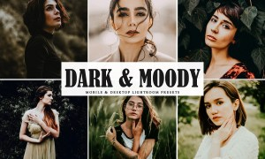 Dark & Moody Lightroom Presets 3976046