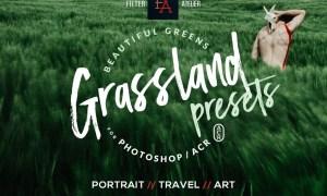 Grassland ACR Presets 1783535
