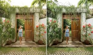Haylsa Tropical Lightroom Presets