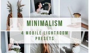Mobile Lightroom Presets Minimalism 3887347