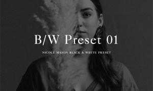 Nicole Mason Photography - Black + White 01 Lightroom Preset