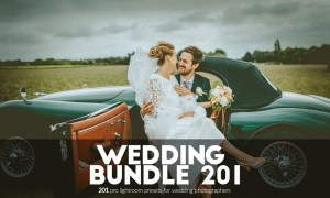 Wedding 201 Lightroom Presets Bundle 1951505