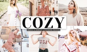 Cozy Mobile & Desktop Lightroom Presets 4065193