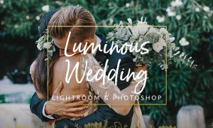 Luminous Film Tones Wedding Presets 1310381