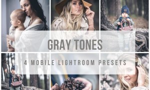 Mobile Lightroom Presets Gray tones 3889930