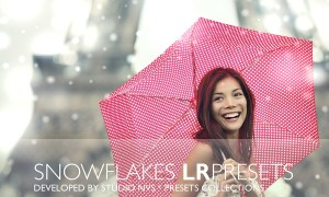 Snowflakes Lightroom Presets 1221928