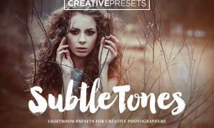SubtleTones 10 Lightroom Presets 311349