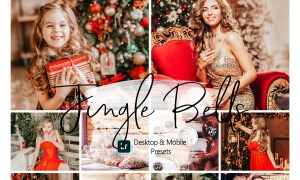 10 Christmas Lightroom Presets 4331250