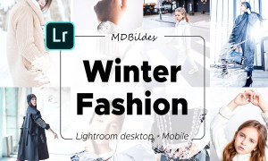 5 Lightroom Presets, Winter Fashion 4356054