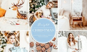 Christmas Blogger Lightroom presets 4385086