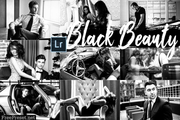 05 Black Beauty Desktop Lightroom Preset 2420554