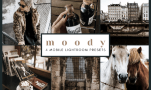 4 Mobile Lightroom Presets | Moody 2651919