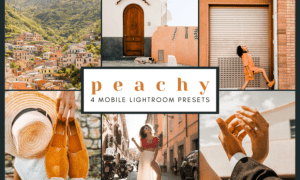 4 Mobile Lightroom Presets | Peachy 2651897