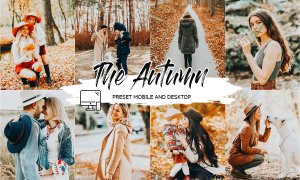 THE AUTUMN LIGHTROOM PRESETS 4438933