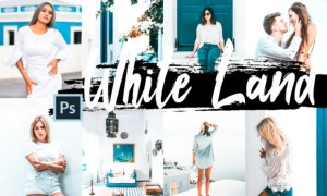 5 White Land Actions ACR and LUT