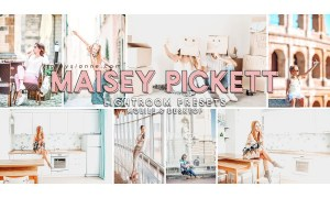 83. Maisey Pickett Presets 4521113