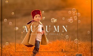 Autumn Lightroom Preset Bundle 2102800