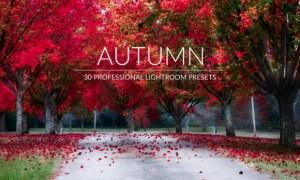 Autumn Lr Presets