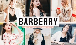 Barberry Mobile & Desktop Lightroom Presets KDEA5JH