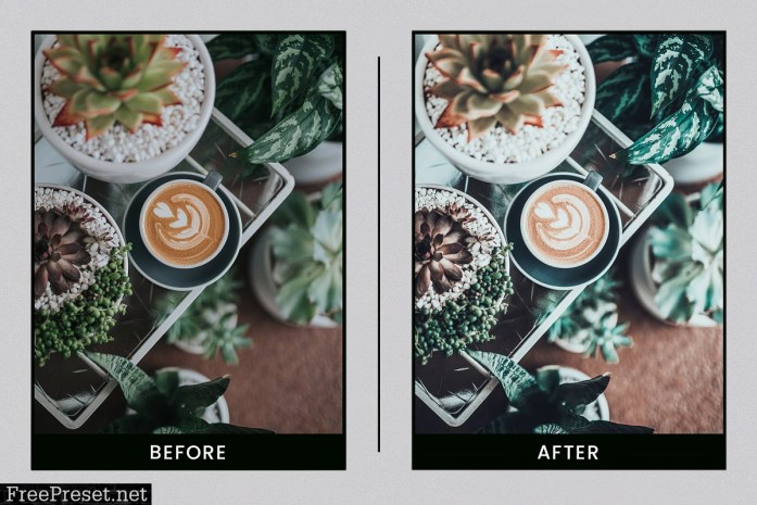 Lightroom Presets Botanical Colors 4410278