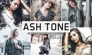 Ash Tone Mobile & Desktop Lightroom Presets