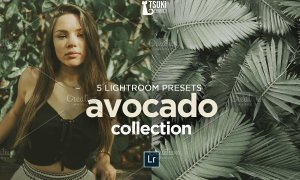 AVOCADO Lightroom Presets 4619013