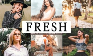 Fresh Mobile & Desktop Lightroom Presets