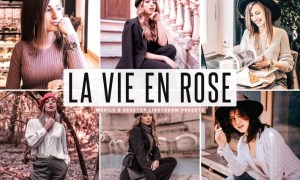 La Vie En Rose Mobile & Desktop Lightroom Presets
