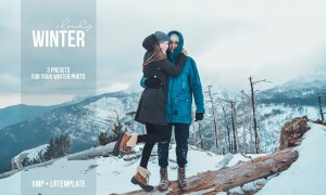 Lightroom Presets. Cloudy winter 4478527