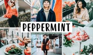 Peppermint Mobile & Desktop Lightroom Presets